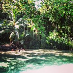 Frenchman's Cove in Portland Jamaica - what a great place to relax. Soooo beautiful!
