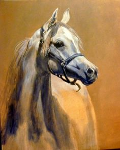 Arab horse painting by Judi Kent Pyrah #ArabianHorses #Art. I love Arab horses so unique.