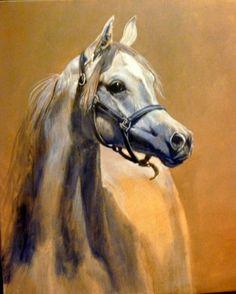 Arab horse painting by Judi Kent Pyrah #ArabianHorses #Art