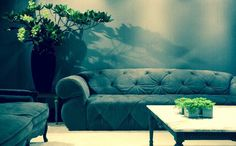 Paramount sofa by modacollection