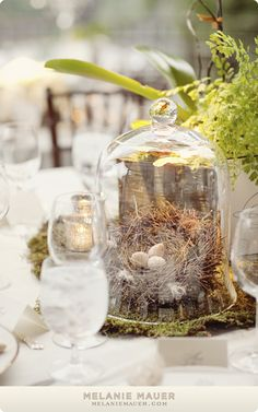 Spring cloche. Decorating and centerpiece ideas.