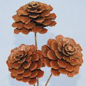 Pine Cone Roses  - More ideas from DriedDecor.com