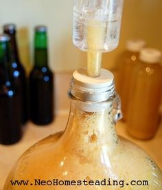 Homebrewing: How to Make Your Own Mead, and Fruit Wine at Home. Make Beer At Home, Make Your Own Wine, Wine And Liquor, Wine And Beer, Recipes With Fruit Cocktail, Mead Wine, How To Make Mead, Booze Drink, Liquor Drinks