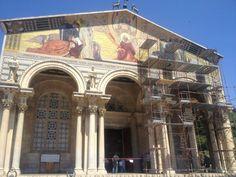 Garden Of Gethsemane / גת שמנים / الجسمانية in שלם, ירושלים