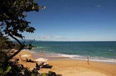 Hotels-live.com : Galerie vidéos sur le Porto Rico http://www.hotels-live.com/videos/porto-rico/ #Vidéos #Voyages via Hotels-live.com https://www.facebook.com/Hotelslive/photos/a.176989469001448.40098.125048940862168/1652340594799654/?type=3 #Tumblr #Hotels-live.com