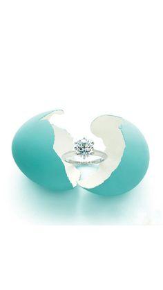 Tiffany & Co. Exactly the ring I want.