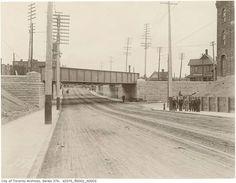 The S/W corner of Queen and Dufferin 1897.
