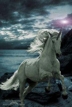 My Unicorn by FairieGoodMother.deviantart.com on @DeviantArt