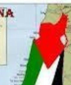 @times_of_palestine'in bu Instagram fotoğrafını gör • 8 beğenme