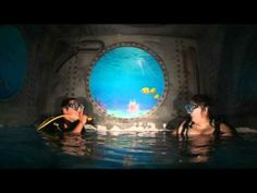 56 Best Deepest Pools Images Deep Pool Diving Pools