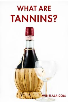 You've probably heard about tannins with wine tasting, but what exactly are tannins? This is everything you need to know about tannins to prepare you for wine tasting or help you pick out the perfect wine for your next party! Wine Games, Lunch Items, Wine Guide, Sangria Recipes, Leftovers Recipes, Gifts For Wine Lovers, Wine Making, Wine Drinks, Red Wine