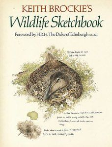 Keith Brockie's Wildlife Sketchbook | New and Used Books from Thrift Books