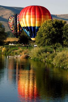 ✮ Hot Air Balloon Rally - Prosser, Washington - Fabulous Pic!