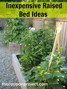 Make sure to follow my Project – Garden Pinterest board for more ideas like this! Just because you are growing your own food does not mean that you will save money! It's easy to drop hundreds – if not thousands – on a beautifully landscaped garden. If your goal is to save money, you'll wantView Post