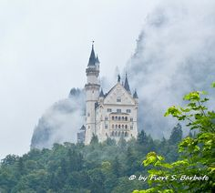 Schwangau [D],2013, Castello di Neuschwanstein.