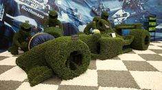 Gold Medal Winner at the Chelsea Flower Show.  That is quite a topiary!