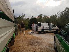 Animali maltrattati, condizioni pietose a Collescipoli, pastore denunciato
