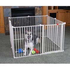 All Top Paw Pet Gates Amp Exercise Pens From Petsmart Usa