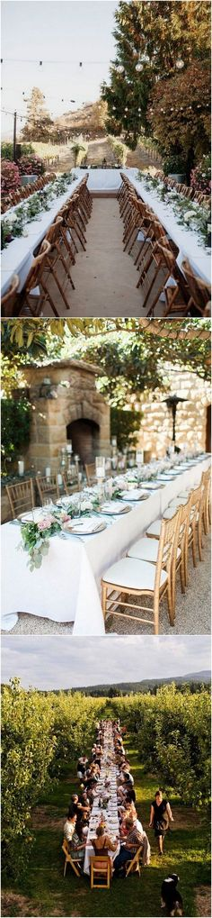 vineyard themed long table wedding reception ideas_1 #weddingideas #weddingdecor #weddingtrends #weddingthemes #vineyardwedding #weddingaisle #weddingceremony
