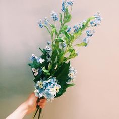 Beautiful bouquet flowers, available in the shop. #sia #flowers #bouquet #giftware #giftsforher