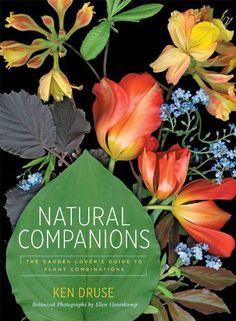 Natural Companions: The Garden Lover's Guide to Plant Combinations by Ken Druse, http://www.amazon.com/dp/1584799013/ref=cm_sw_r_pi_dp_uWn8qb1V1ASNV