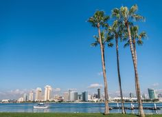 It's not too early to plan your winter getaway! Our single destination vacations give you a balance of activity and leisure while enjoying the convenience of staying in one deluxe hotel the whole time. Join us in sunny San Diego!