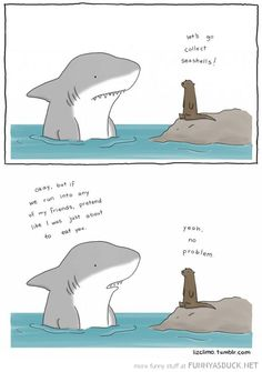 Shark Otter Friendship