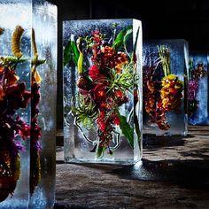 """@azumamakoto on Instagram: """"Iced Flowers #flowers #amkkproject #amkk #shiinokishunsuke #makotoazuma #azumamakoto #東信 #東信花樹研究所 #flowerart"""""""