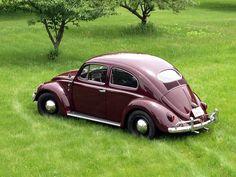 '57 VW Oval Beetle