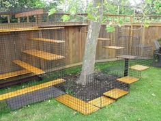 An outdoor cat playpen is a great solution if you need to keep the pet locked but you also want to provide some fun to it. Browse the outdoor designs to choose one which matches the pet's size and it needs. Outdoor Cat Playpen, Outdoor Cats, Outdoor Cat Tunnel, Outdoor Spaces, Dog Backyard, Backyard Fences, Yard Fencing, Gabion Fence, Fence Planters