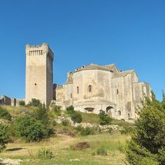 L'Abbaye de Montmajour est un site exceptionnel. Fondée au X°s sur un îlot entouré de marais, cet établissement bénédictin a bénéficié de la générosité des comtes de Provence et de la fréquentation de très nombreux pélerins. Au 14°s, l'église doit se fortifier et une puissante tour est construite. Au 18°s, un grand monastère est ajouté aux bâtiments médiévaux. L'abbaye est ruinée à la Révolution.