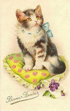 Illustration Mignonne, Photo Chat, Cat Cards, Greeting Cards, Vintage Cat, Cat Drawing, Vintage Pictures, Vintage Postcards, Crazy Cats