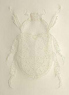 LE SCARABÉE Dans l'Egypte Antique, le scarabée est le symbole du soleil levant. Il favorise la vie et la fertilité. Fort de cette s...