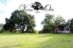 A beautiful outdoor wedding venue in south Texas. Perfect for any vintage, rustic, or country chic style setting. Vintage Oaks Events www.vintageoaksevents.com