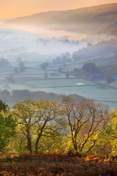 """Upper Wharfedale, Yorkshire Dales, England. It is the upper valley of the River Wharfe. The name Wharfe is Celtic and means """"twisting, winding."""""""