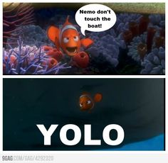 Nemo, you only live once...