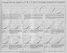 Spencerian Scripttaken from Real Penwork