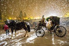Hapsburg Carnival takes place in Madonna di Campiglio every winter www.campigliodolomiti.it