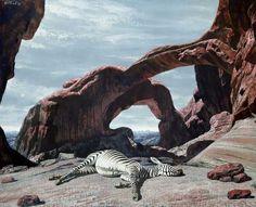 sleeping zebra 1959