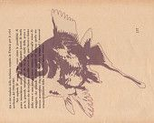 Pag.57, Pesce Rosso, stampa in scala di rosso, posizione pagina orizzontale.