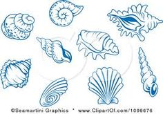 shell tattoo designs - Next time we go to San Diego we are getting matching shell tattoos
