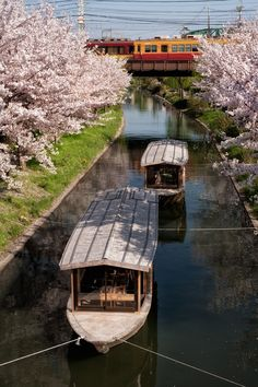 Kyoto, Japan: photo by mptfk