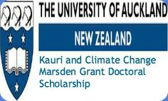 Kauri and Climate Change Marsden Grant Doctoral Scholarship in New Zealand , and applications are submitted till 17 June 2014. University of Auckland is offering doctoral scholarship to undertake research relating to the impacts of climate change on kauri ecophysiology, in the School of Environment. - See more at: http://www.scholarshipsbar.com/kauri-and-climate-change-marsden-grant-doctoral-scholarship.html#sthash.ByB62PZ8.dpuf