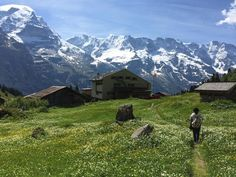 Blumental Panorama Trail, Murren: See 74 reviews, articles, and 104 photos of Blumental Panorama Trail, ranked No.2 on TripAdvisor among 9 attractions in Murren.