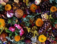 Dry your apple & lemon/lime/orange peels, along w/fallen blooms from house plants for Potpourri
