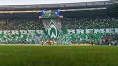 All info, news and stats relating to SV Werder Bremen in the Bundesliga season Soccer, Bee Cakes, Card Crafts, Football, European Football, Soccer Ball, Futbol
