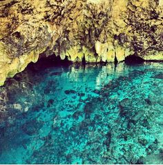 Snorkelling in Cenotes