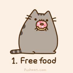 pusheen donut   Reasons You Should Consider Being A Cat