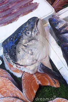 Fish Parts In Market - Fish head on salmon steaks in white styrofoam containers on display in fish market. Photo taken on: October 29th, 2016