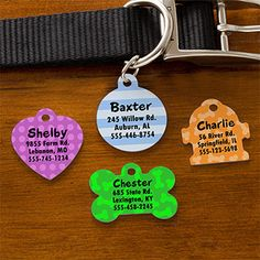 Choose your Design Personalized Pet ID Tags from PersonalizationMall - they have a TON of choices to pick from! They have different shapes, designs and colors and you can personalize the tags with any 4 lines - they're only $7.95! #Dog #Cat #Pet #IDTags